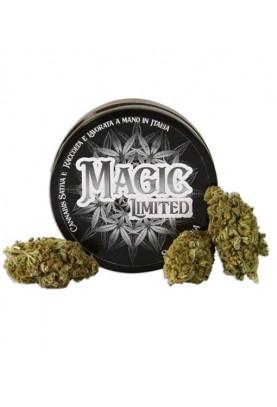 Magic Limited Pura