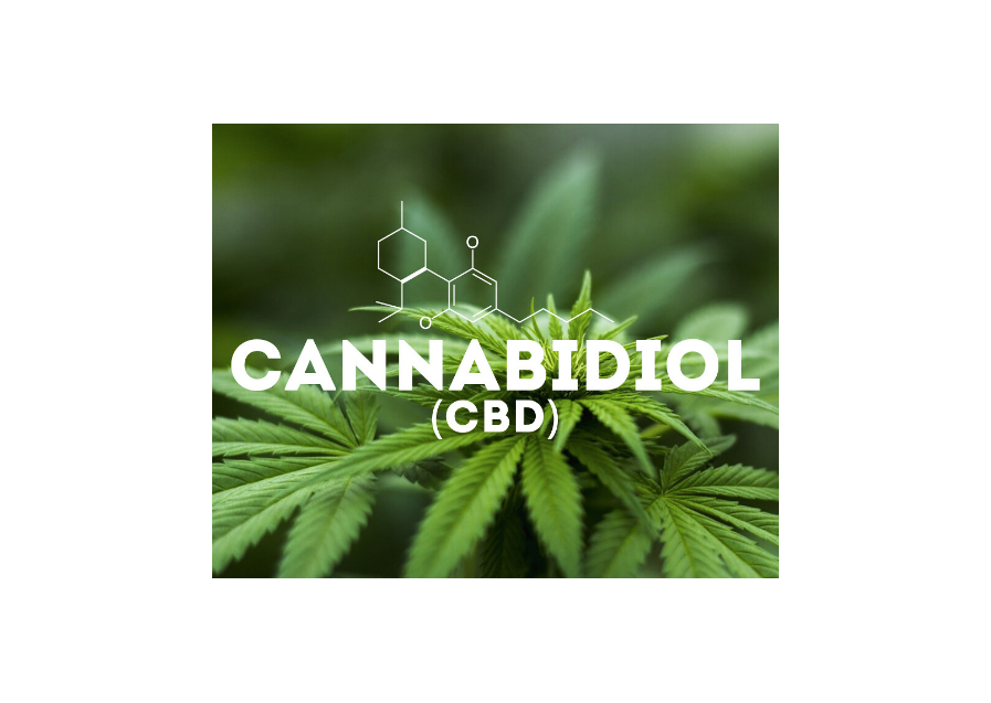 IS IT SAFE TO USE CBD OIL?